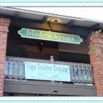 bird-rock